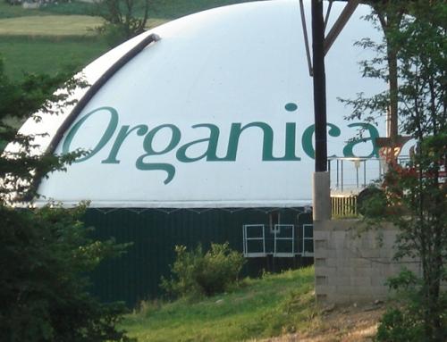 Organica celostna vizualna oprema